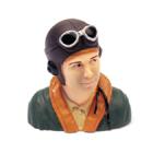 WWII Pilot Bust