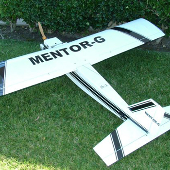 Mentor-G Gas/Glow Trainer 83