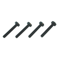 MP Jet Nylon Bolt M6 x 40 (x4)