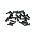 SAI200TI31 - Crankcase Screw Set