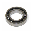 SAI300T21 - Main Ball Bearing