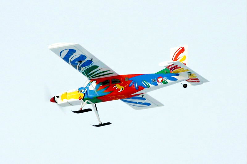 VQ Models Pilatus PC-6 (Bird Version) 62in Wingspan ARF (EP/GP) - Click Image to Close